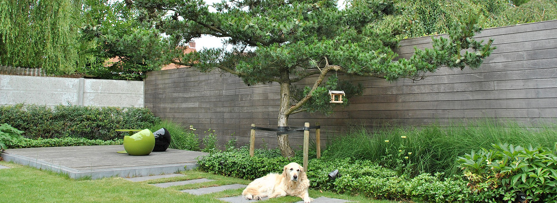 Besondere Baume Fur Kleine Garten Lesen Sie Unsere Tipps